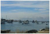 Barcos de pesca cerca de la orilla