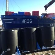 navaja en cajas y contenedores en puerto pesquero